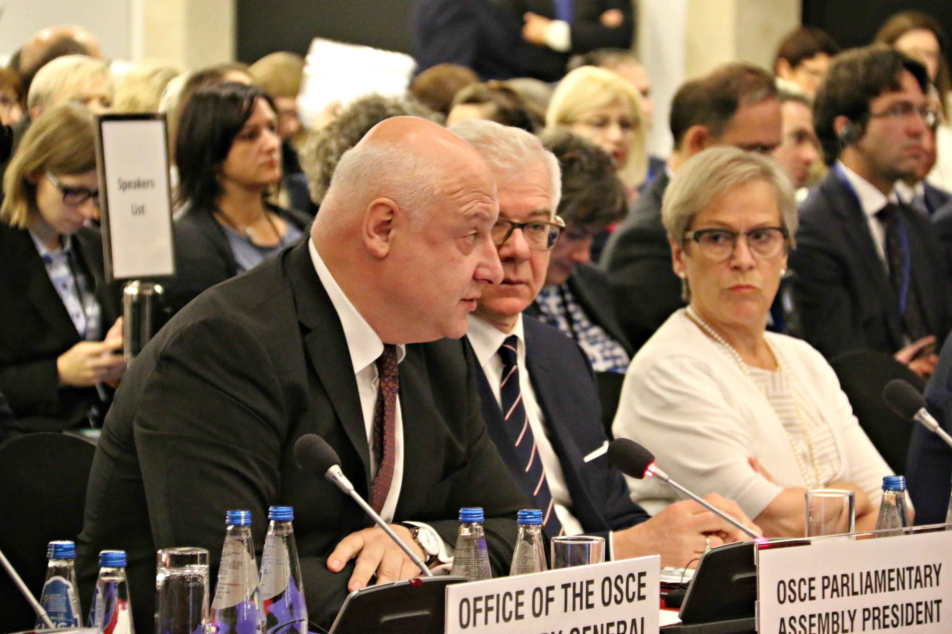 OSCE PA Pres. George Tsereteli addresses the OSCE ODIHR HDIM in Warsaw, 10 Sept. 2018